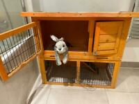 Used Rabbit Hutch with Rabbit Soft Toy for sale