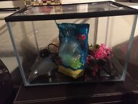 24 litre fish tank for cold or tropical fish
