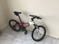 Bicycle for Kids - for sale