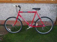 Raleigh Firefly series 1 mountain bike