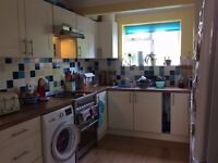 Lovely double room in a friendly houseshare for professional female