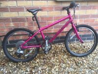 Girls Islabike Beinn 20L - Pink
