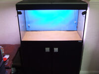 Fluval Roma 125 Fish tank with stand.