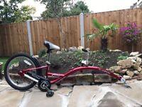 WeeRide Aluminium Lightweight Pro Pilot Tagalong Trailer Bike