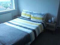 Beechwood veneer spare double bed and mattress £75 ono also pair of Ikea bedside tables £10