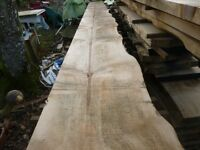 monkey puzzle planks/boards