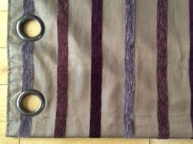 Striped Next Curtains