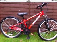 Kids mountain bike Apollo XC24