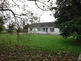 Bungalow to rent, 3 bedrooms, garage, garden/yard. Rural location near Seskinore, 7 miles to Omagh