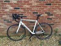 Boardman Road Sport Bike - 55.5cm **immaculate condition**