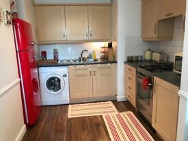 Large, clean 1-bed with patio to let - available 18th July 2018