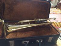 Trumpet (Corton)