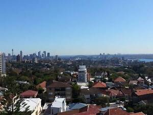Single Room in Flatshare for a male!! Bondi Junction Eastern Suburbs Preview