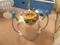 Fisher Price Jumperoo Baby Bouncer