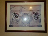 Tiger Framed Picture / Painting / Wall Art - Originally £120 - Liverpool Area