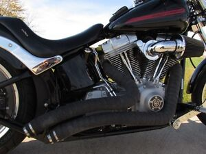 2007 harley-davidson FXST Softail   $4,000 In Options and Custom London Ontario image 5