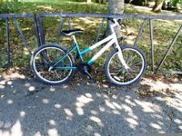 Small Ladies / Girls Mountain Bike For Sale. Fully Serviced & Ready To Ride. Guaranteed. 18 Speed