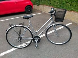 Falcon ladies bike cleaned & serviced with Basil front basket