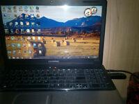 Laptop HP CQ61
