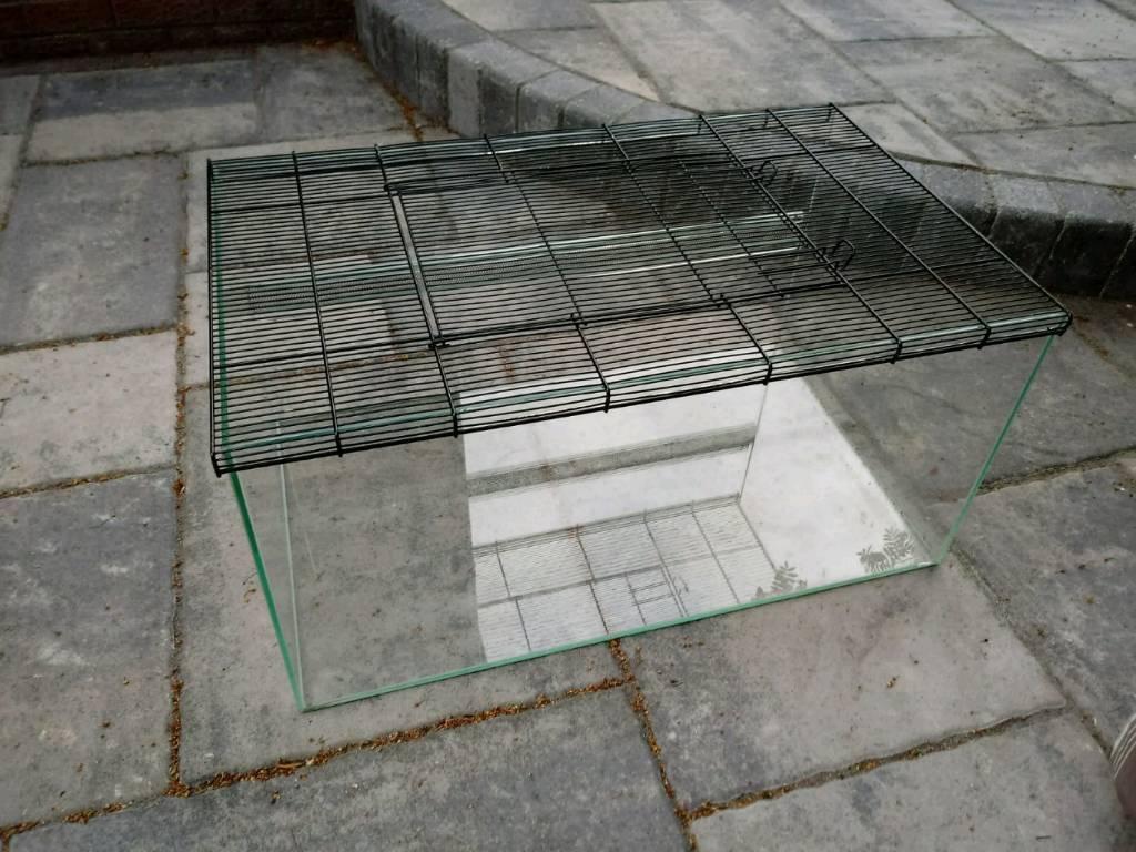 Small Pet Terrarium Kerry Hamster Cage In Dundonald Belfast