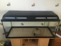 Marina Fish Tank for Sale and Unit