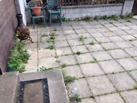 Landscaping and Gardening Services - Cheap and professional!