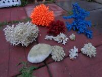 Coral for fish tank
