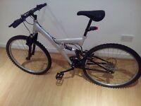 Mountain bike bargain read!