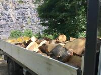Logs 2-3 tons flatbed full free local delivery