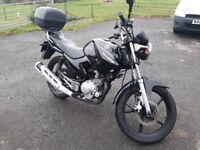 Yamaha YBR125 2010 black 125 learner motorbike