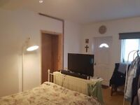Bedsit self contained BS65SQ