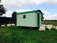 Shepherds Hut, Glamping
