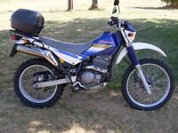 Kawasaki kl 250 super sherpa full mot mature owner excellent condition 4 stroke ideal town/country