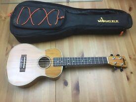 Moselele concert ukulele