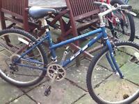 Lady's GT mountain bike