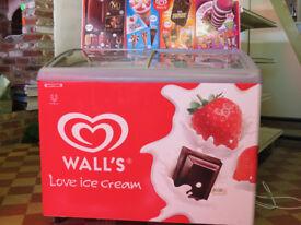 Walls Branded Vista 12 LED Ice Cream Freezer