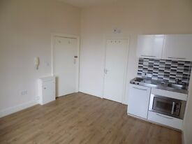 SB Lets & Sales are delighted to offer this wonderful and Large studio flat .