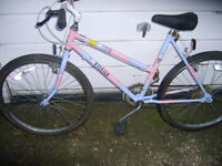 raleigh coco ladies/adults mountain bikeVGC,,,NEED GONE THIS WEEKEND