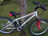 Revolution Cairn Mountain Bike - 24