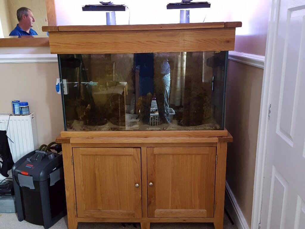 250 litre marine aquarium with sump
