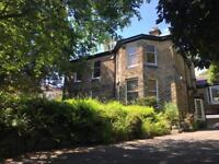 Large 1 bed apartment in lovely old house.