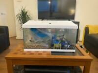 Fish tank 100L - with accessories