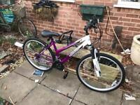 Ladies Terrain Snowdon Bike