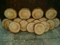 Timber Slabs Pine