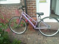 Ladies Apollo Haze cycle. £30