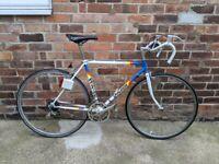 Vintage 1984 Raleigh Professional Team Panasonic Road Bike