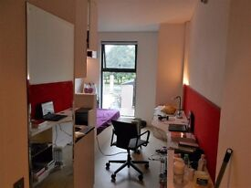 STUDENT Bronze Studio. All bills included. Free use of private swimming pool & pool table.