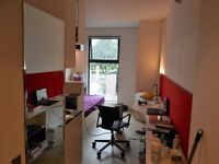 STUDENT Bronze Studio. All bills included. Free use of private swimming pool, pool table & gym..