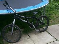 Oza tvee trials bike