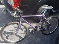 Re-Conditioned Mountain Bike